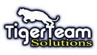 Tiger Team Solutions